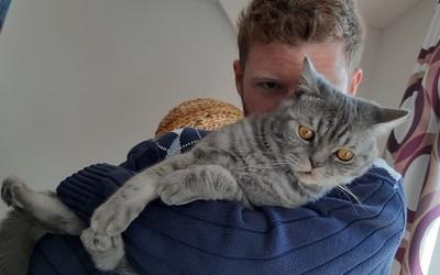 mywhispercats.com