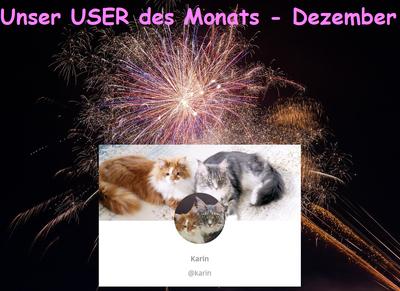 User des Monats Dezember